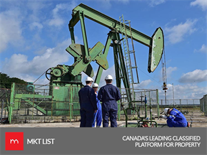 Alarming News: Oil Prices Likely to Affect the Canadian Economy!