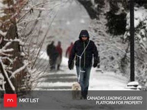 Weather Update Canada: Heavy Snowfall Alert for Calgary