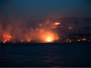 Multiple Wildfires Ruined Nearly 1000 Homes, Evacuation Needed!!