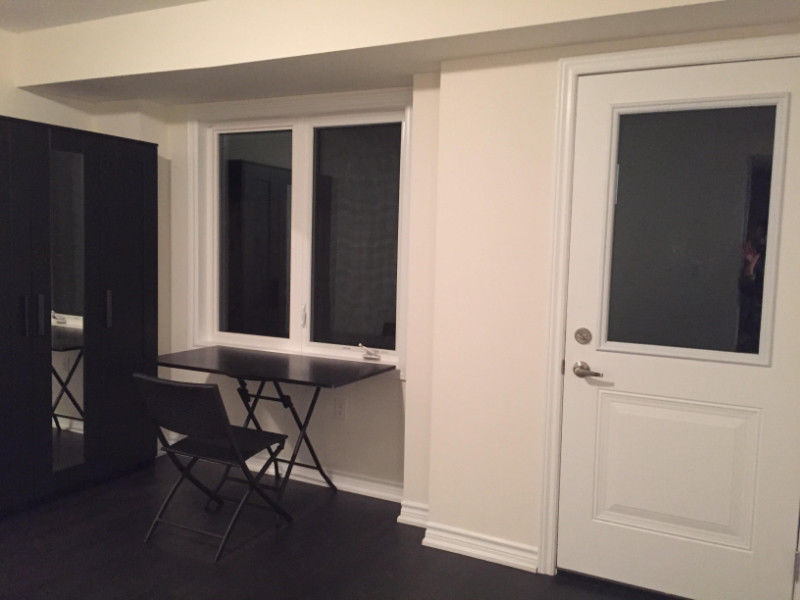 Furnished Studio apartment Near York University- new townhouse
