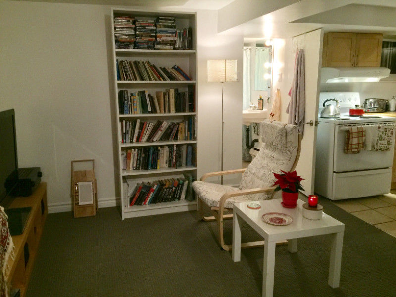 Lower-level studio available mid-Jan or Feb 1st $1165