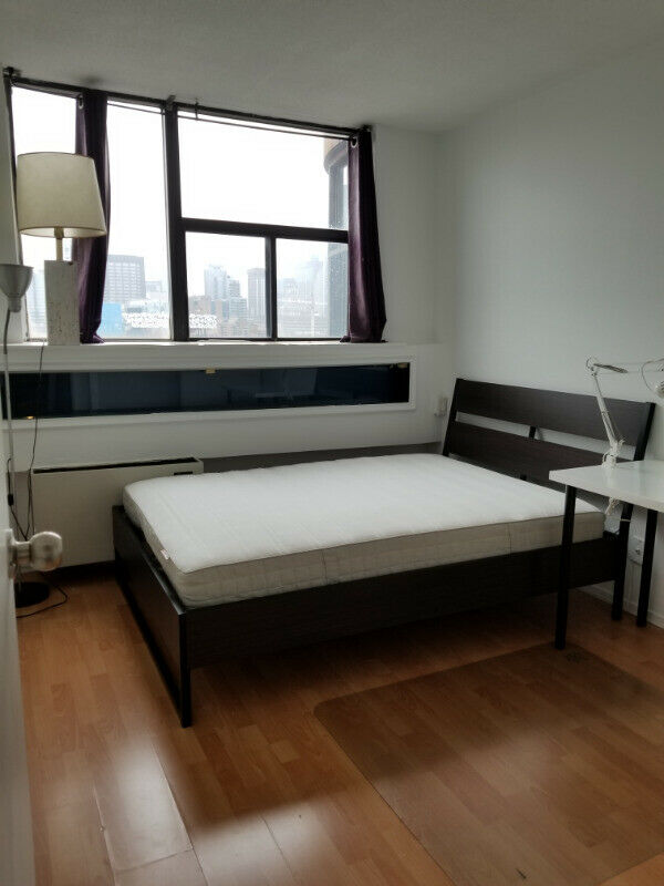 1 Single Room Available in Condo, Downtown Toronto All-Inclusive