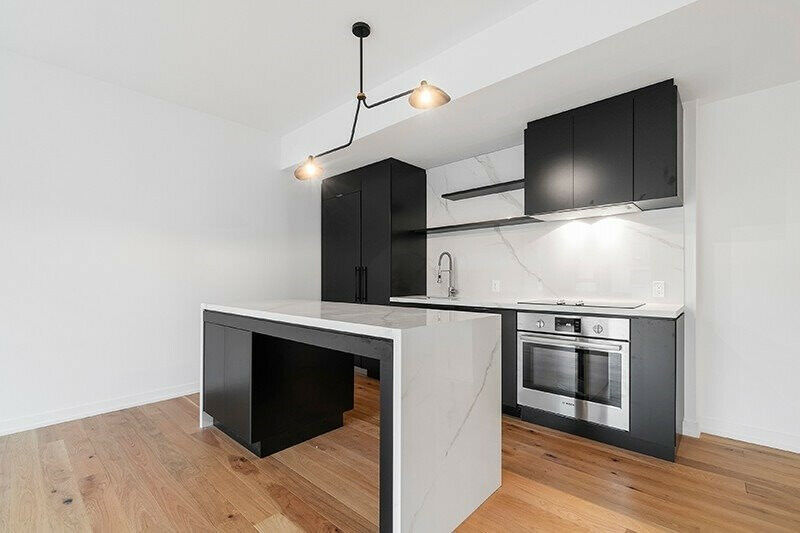 Brand NEW Roncesvalles TOWN HOME!